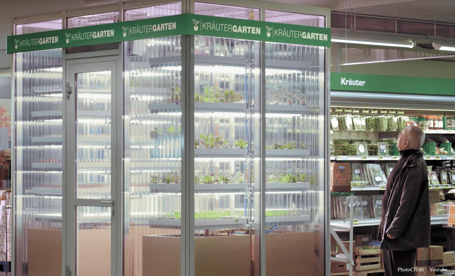 便利商店就是農場,想買青菜直接摘下來!這家德國公司要徹底改變我們買蔬菜的方式